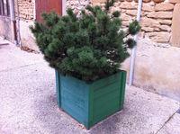 Jardinière en Châtaignier lasurée vertes