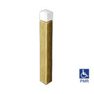 Acheter Borne PMR à tête blanche - Solution Pin au meilleur prix